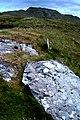 Cró na Saileach, near Kilcar - geograph.org.uk - 1352939.jpg