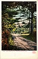 Cross Roads to Spot Pond (NBY 6819).jpg