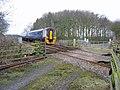 Crossing East of Harpham - geograph.org.uk - 142930.jpg