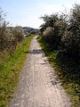 Cycle path - Pill to Bristol - geograph.org.uk - 395560.jpg