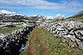 DSC01767 Ruta del Cornón, parque natural de Somiedo (Asturias).jpg