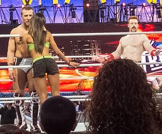 AJ Lee - The kiss that cost Daniel Bryan his World Heavyweight Championship to Sheamus at WrestleMania XXVIII