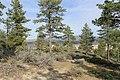 Davis Creek Park - panoramio (56).jpg