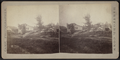 Debris of a collapsed house, by Camp, D. S. (Daniel S.) 2.png