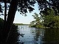 Dehmsee 12-07-2010 14.jpg