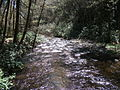 Delaware Water Gap National Recreation Area - Pennsylvania (5678346014).jpg