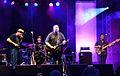 Detmold - 2014-08-09 - Michael van Merwyk & Band (26).jpg