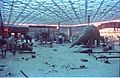 Dinosaurs Alive Exhibition in Progress - Science City - Calcutta 1995-June 387.JPG