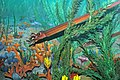 Diorama of a Cincinnatian seafloor (Late Ordovician) - nautiloid, algae, crinoids, bryozoans (45616732791).jpg