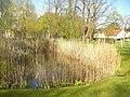 Dorfteich - Stahnsdorf (Stahnsdorf Village Pond) - geo.hlipp.de - 35359.jpg