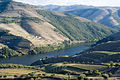 Douro valley (3913521736).jpg