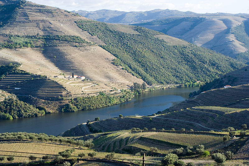Douro Valley in Europe