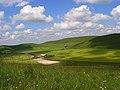 Downland, Stanton St Bernard - geograph.org.uk - 844956.jpg