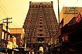 Dravidian.jpg