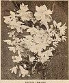 Dreer's wholesale price list - Henry A. Dreer. (21052248212).jpg