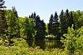 Dubechne Starovyzhivskyi Volynska-Dubechnivskyi park architecture monument-view near lake-3.jpg