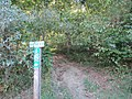 East Bradford Township, PA, USA - panoramio (9).jpg