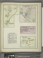 East Pharsalia (Village); Plymouth Business Notices; Plymouth (Village); North Pharsalia (Village); Preston (Village) NYPL1576085.tiff