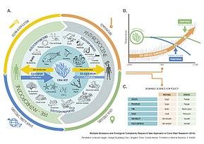 Holocene extinction - Wikipedia