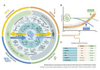 Holocene extinction - A diagram showing the ecological processes of coral reefs before and after the Anthropocene