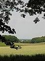 Eighteen Acres, Tunworth - geograph.org.uk - 195738.jpg
