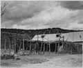 El Cerrito, San Miguel County, New Mexico. The usual sort of shed and corral. As so often happens, . . . - NARA - 521160.tif