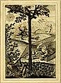 Emblems, divine and moral (1824) (14565203680).jpg