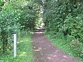 Entrance to trail in the Warren - geograph.org.uk - 2618050.jpg