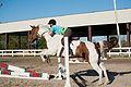 Equestrian Club (8577189147).jpg