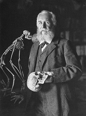 Merseburg - Ernst Haeckel in 1906
