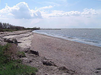 Camargue - Shoreline of the Étang de Vaccarès