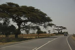Transport in Ethiopia - A new highway in Ethiopia (2007)