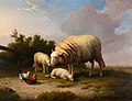 Eugène Joseph Verboeckhoven (1798-1881) - A Sheep, Two Lambs, a Cock and a Hen in a Landscape - 461455 - National Trust.jpg