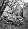 exterieur overzicht tuin achterzijde - 20000508 - rce