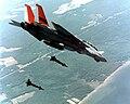 F-14A NAWC LGBs.JPEG