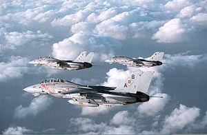 F-14B VF-102 OSW.JPEG