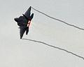 F-22 Raptor trailing vapor (5232750174).jpg