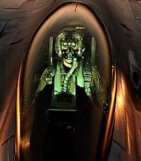 F 16 Pilot Tulumu ANVISを装着した F-16 パイロット ( バーモント空軍 ...