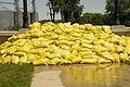 FEMA - 35570 - Yellow sand bags in Iowa.jpg