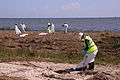 FEMA - 38182 - Clean up crews work on the beach in Mississippi after Hurricane Gustav.jpg