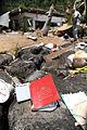 FEMA - 42040 - Debris in American Samoa.jpg