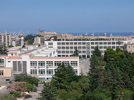 The University of Palermo