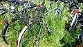 Fahrrad P1010911a.jpg