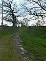 Farm track to Cae'r Mynydd - geograph.org.uk - 784974.jpg