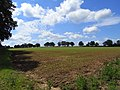 Farmland, Wolverton - geograph.org.uk - 1775516.jpg