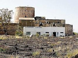 Torre Faro - Wikipedia