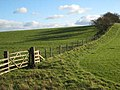Fence near Belsay - geograph.org.uk - 271504.jpg