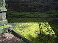 Fence shadow. (2609547113).jpg