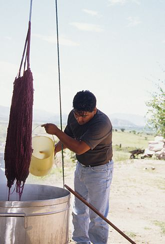 Natural dye - Oaxaca artisan Fidel Cruz Lazo dying yarn for rug making