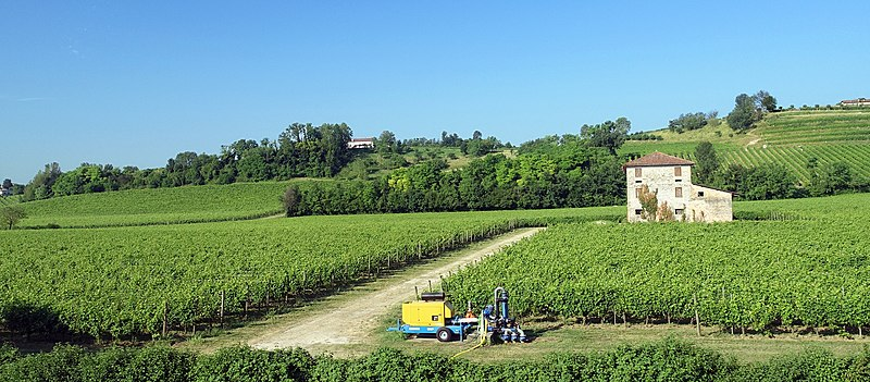 800px-field_in_italy_2